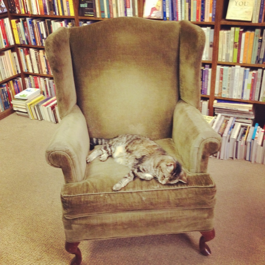 Bookstore: The DustyBookshelf