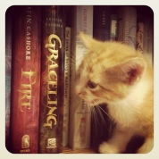 """spike says """"moar books"""""""