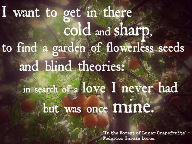 i want to get in there cold and sharp to find a garden of flowerless seeds and blind theories in search of a love i never had but was once mine - federico garcia lorca, in the garden of lunar grapefruits