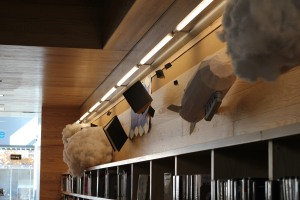 cloud and diribible flying book library display