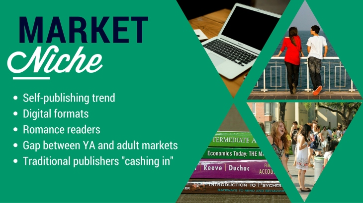 market niche final
